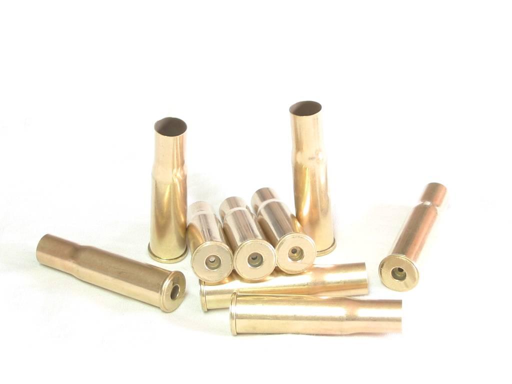 Douilles x20 calibre 10.3x60R (Gras)